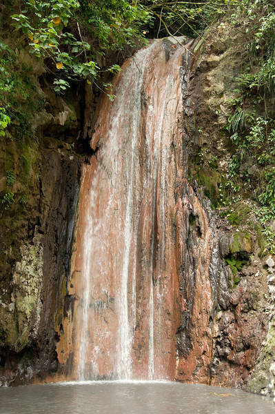Diamond Botanical Gardens and Waterfall