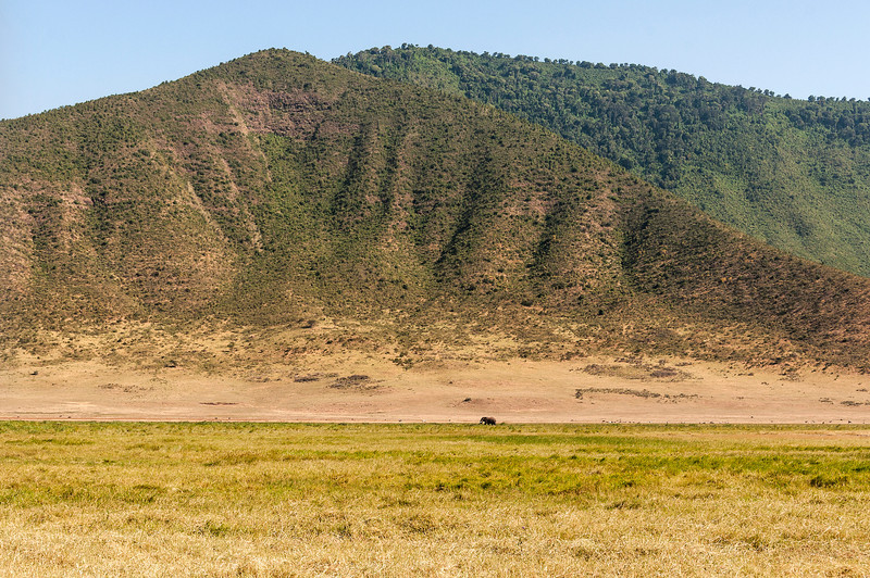 Ngorongoro Crater - Elephant Dwarfed by the Crater