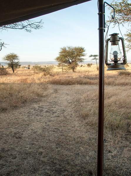 Serengeti from the Tent