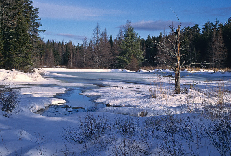 This back country pond is seldom visited by humans, but provides us with a marvelous image of winter beauty and loneliness.  The sun is setting spreading a soft glow across the frozen pond.