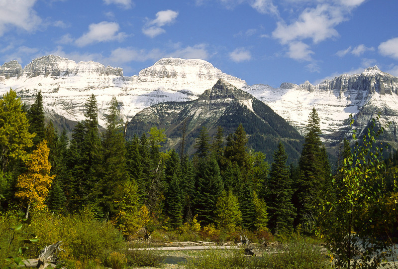 The Northern Montana Rockies, beautiful deep forest and snow-capped mountains provides an enchanting image.