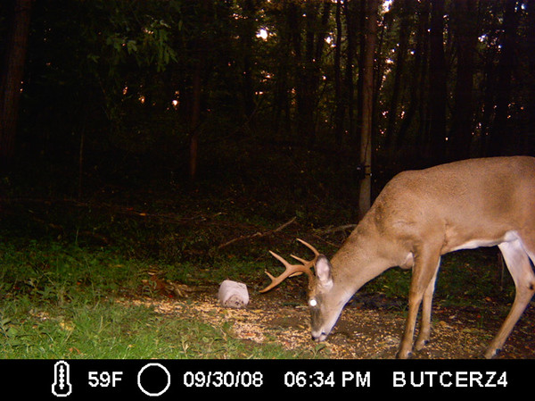 Moultrie Gamespy 200