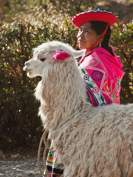 Cusco - Andean woman with llama at Sacsayhuaman site