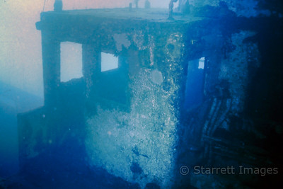 Wrecks are covered in marine growth
