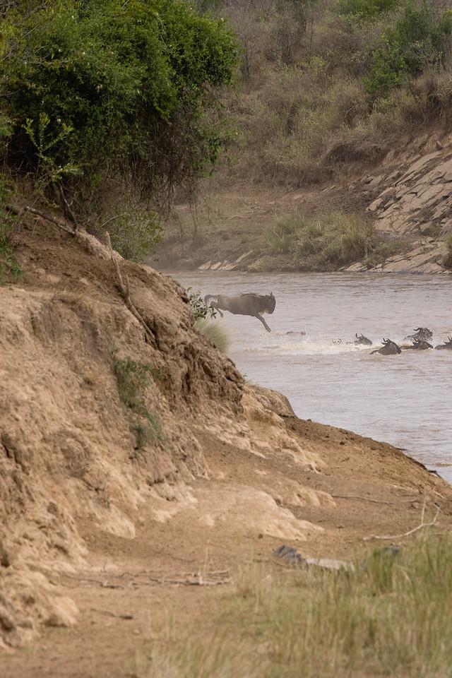20100911_Maasi Mara_044