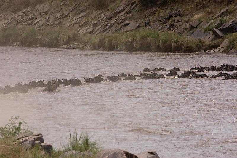 20100911_Maasi Mara_029