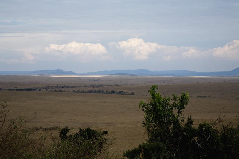 20100910_Maasi Mara_659