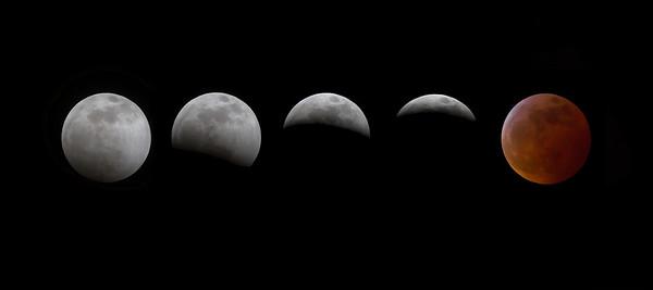 wolf moon 4