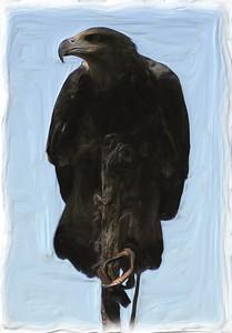 Eagle Minion