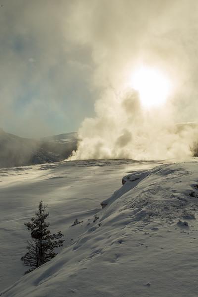 0159_Yellowstone_01212018