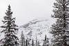 0106_Yellowstone_01202018
