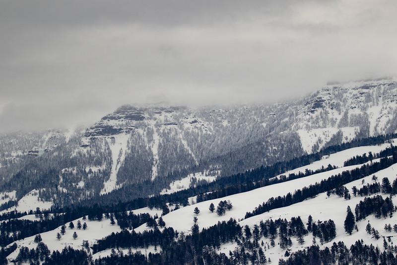 0006_Yellowstone_01312019