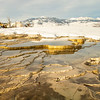 0705_Yellowstone_02012019