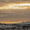 0033_Yellowstone_01312019