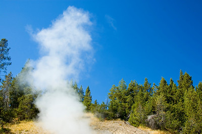 Steam from a Yellowstone geyser rises into the air.