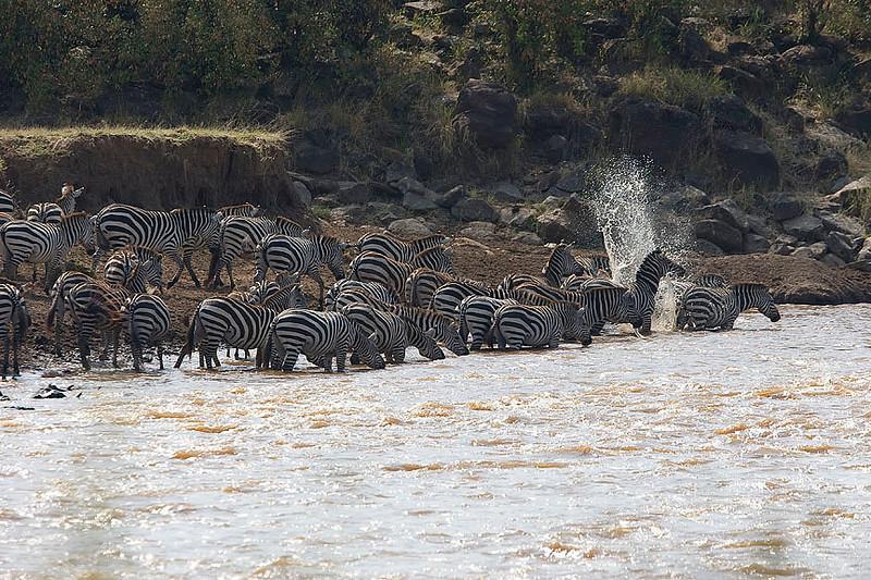 2007 07 26 Masai Mara 210