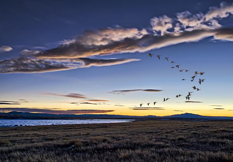 Serenity Found Somewhere in Wyoming