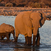 Elephant cow and calf bathing at Klein Namutoni waterhole, Etosha National Park, Namibia, Africa