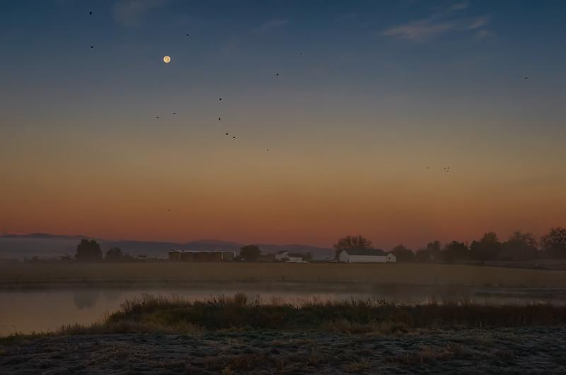 Misty Front Range Morning