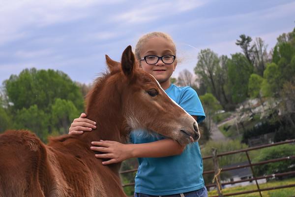 Horses-021
