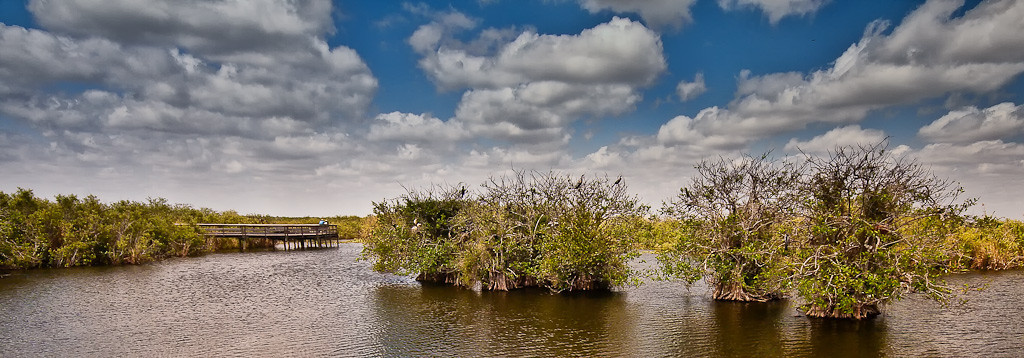 Everglades March 2009