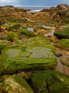 Beach boulders Reid State Park Georgetown, Maine 7/13/11