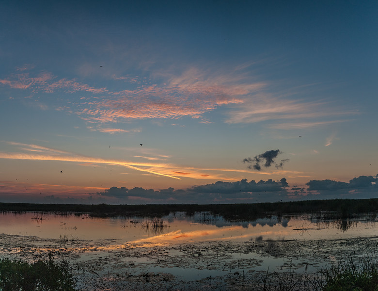 Shoveler Pond Sunrise