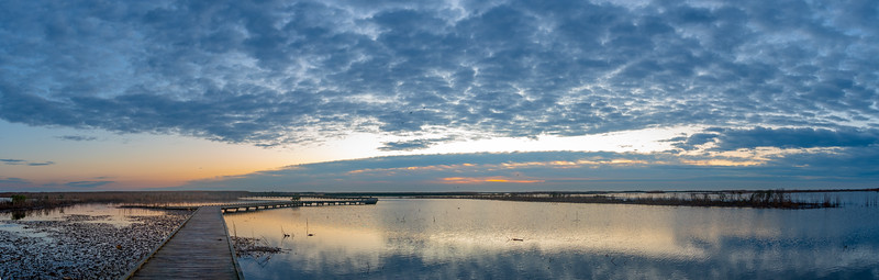 Before Sunrise from the Shoveler Pond Boardwalk