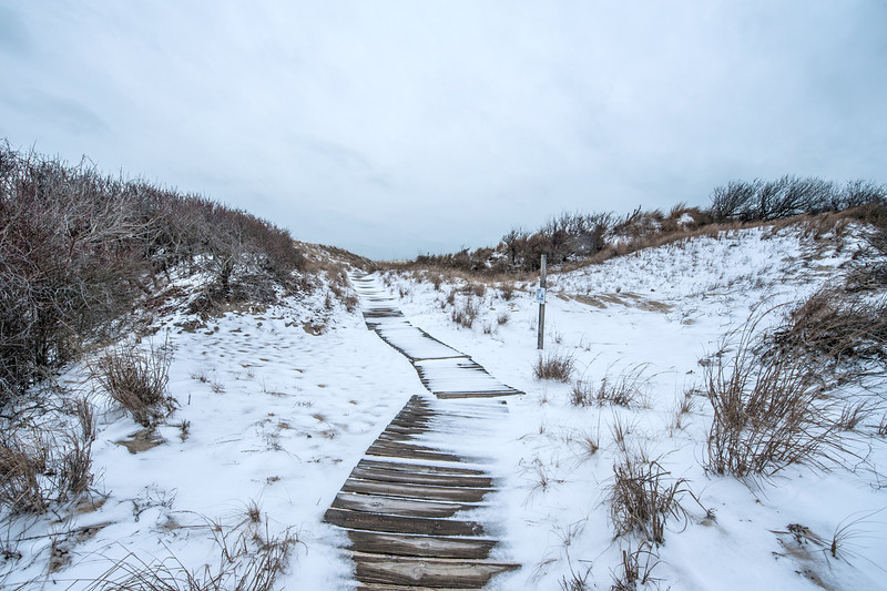 Here is the final portion of the boardwalk as it nears the top of the sand dunes.
