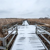One of the boardwalks at the refuge.