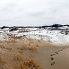 This is a panorama as I looked back at the boardwalk from near the top of the sand dunes.