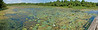 Champion Lake