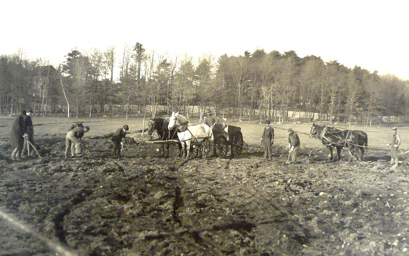 1900: Residents and supervisors working the land, somewhere near where Canterbury Brook flows under the American Legion Highway today; notice also the reclaimed marshland in the background. <em>Courtesy of the State Library of Massachusetts Special Collections Department.</em>