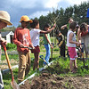 Drumlin ELC - Learning to Help in the Garden