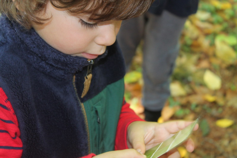 Ipswich River Nature Preschool
