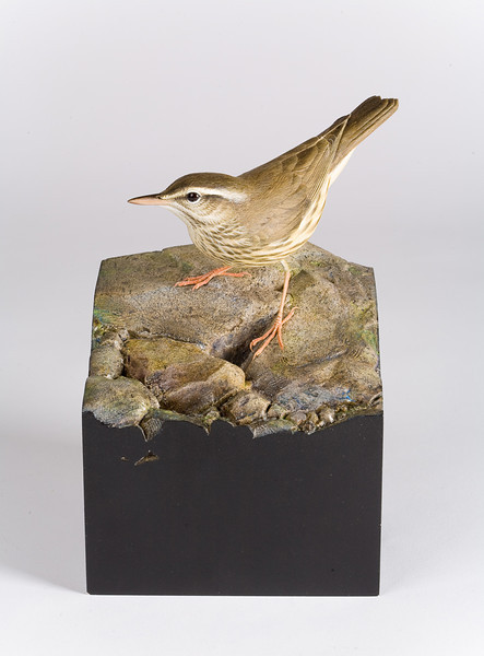 "From the <a href=""http://www.massaudubon.org/Nature_Connection/Sanctuaries/Visual_Arts/index.php"">Mass Audubon Art Collection</a>: Larry Barth, <em>Waterthrush</em>"