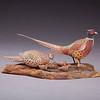 """From the <a href=""""http://www.massaudubon.org/Nature_Connection/Sanctuaries/Visual_Arts/index.php"""">Mass Audubon Art Collection</a>: Allen James King, <i>Ring-necked Pheasant"""