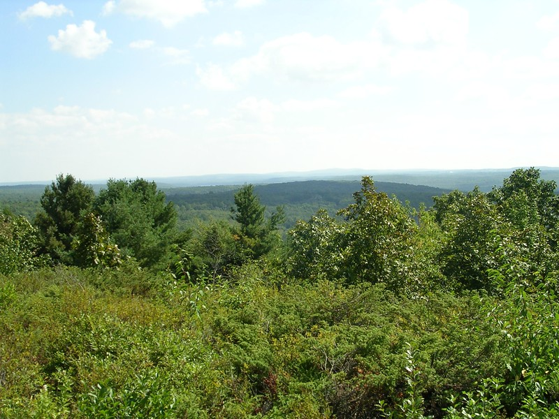 Wachusett Meadow in Princeton