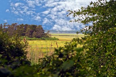 Barnstable Great Marsh in Barnstable