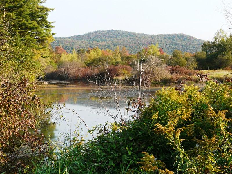 Canoe Meadows in Pittsfield