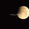 Stage 1 Lunar Eclipse