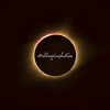 Totality Solar Eclipse 2017
