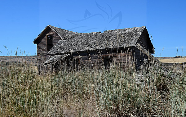 108 ~ Mansfield house with part of the old log cabin.