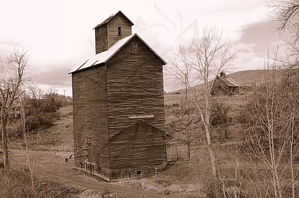 87 ~ Sepia grist mill.