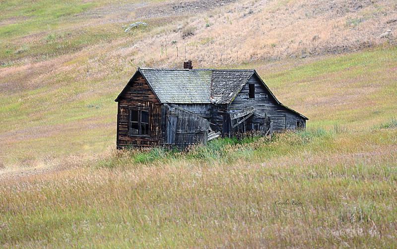 109 ~ Wacconda house.