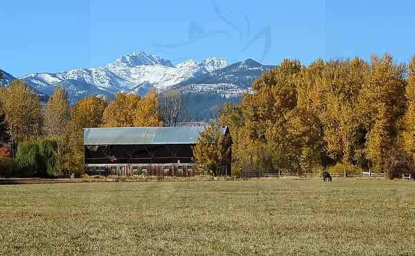 Mt Gardner and barn.