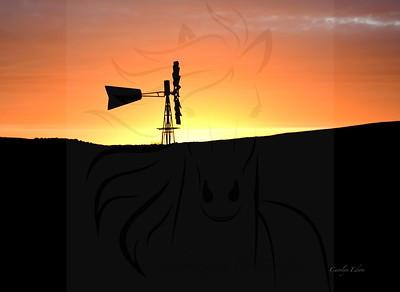Windmill sunrise.