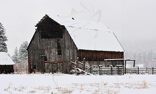 Snow at the Kumm barn.