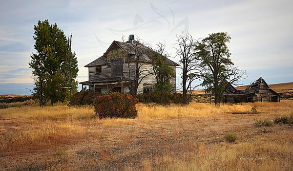 118 ~ Homestead house