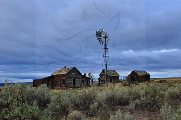 100 ~ A favorite homestead.